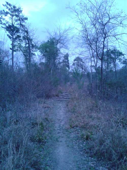The Memorial Park has numerous trails, some of these Houston bike trails are haunted.