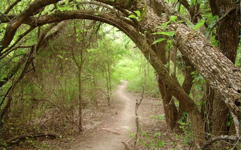 Erwin Park in McKinney, Texas is most haunted during dusk.