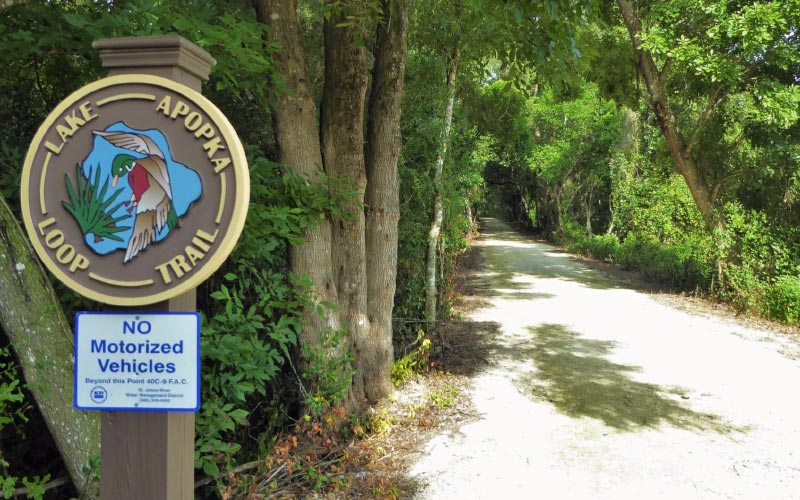 The Lake Apopka Loop Trail at Magnolia Park in Apopka, FL is haunted by such sad, regretful spirits that the entire place has this dreary vibe about it.