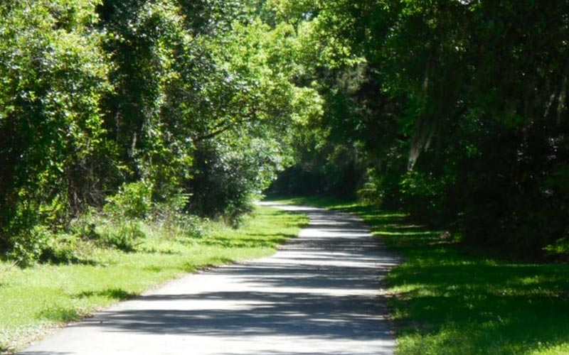 Croom Trails in Withlacoochee State Forest in Inverness, FL is a long and window road, but unfortunately it leads somewhere much more sinister than your door.