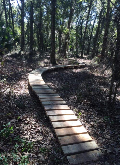 The Santos Trail in Ocala, Florida is believed to be incredibly haunted, and few would disagree.