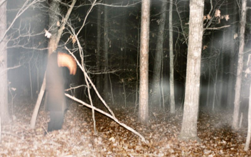 True Scary Story: Terror in the Woods