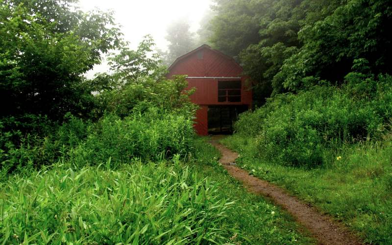 What Are Appalachian Trail Shelters Like [Discover the Truth]