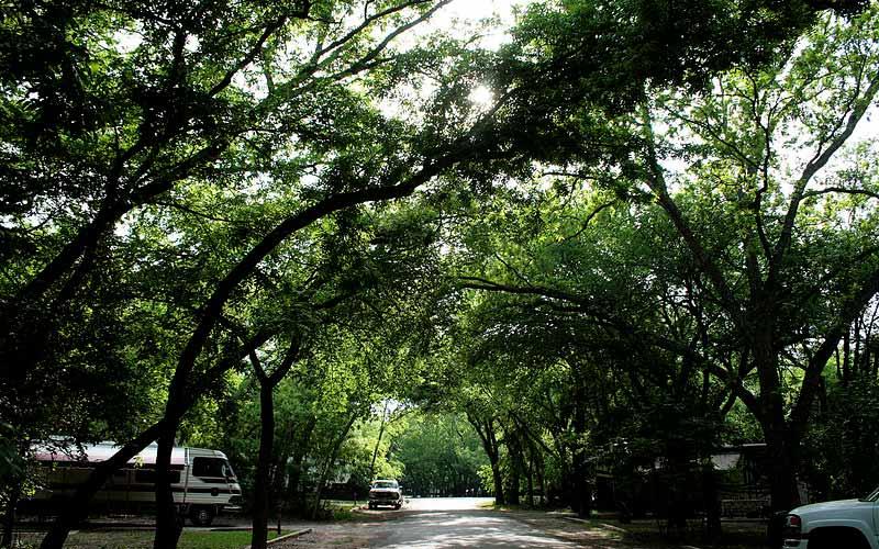 Abilene State Park – Tuscola