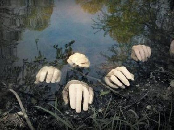 Floating hands in the creek.