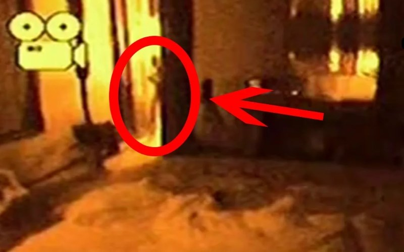 5 Real Aliens Caught On Tape?