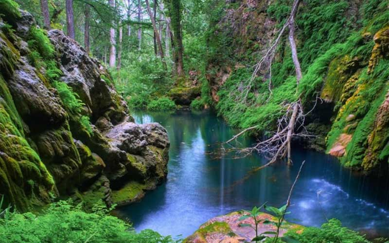 Westcave Preserve in Round Mountain, Texas