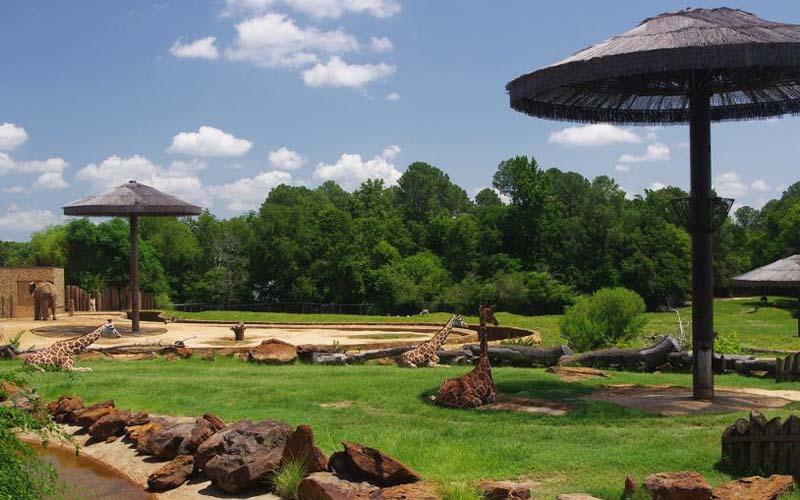Caldwell Zoo in Tyler, Texas