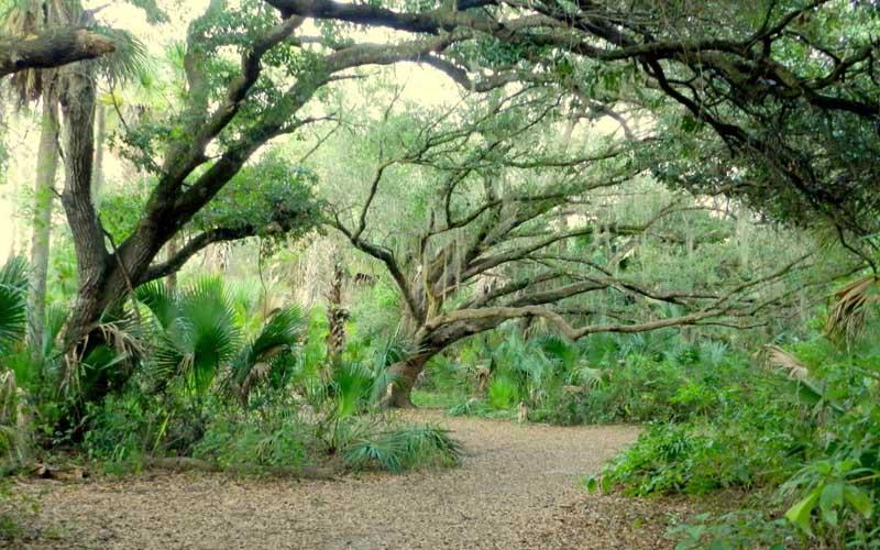 Oak Hammock Park in Port St. Lucie, Florida