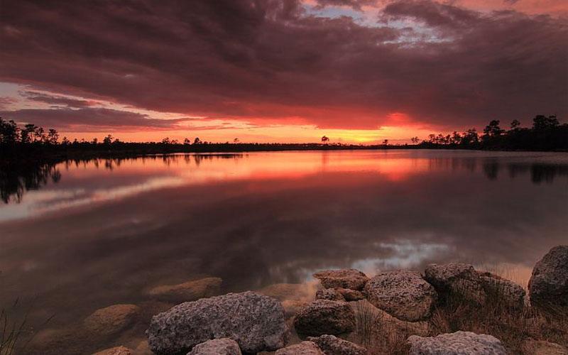 Everglades National Park in Homestead, Florida