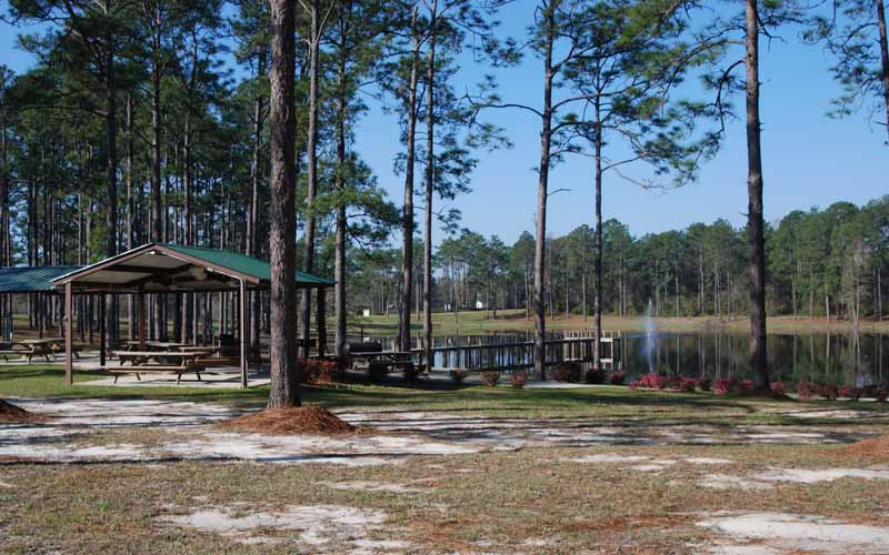 Dead Lakes Recreation Area in Wewahitchka, Florida.