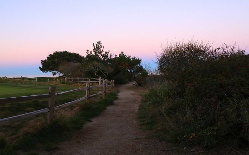 Paranormal Pacific Grove: You'll Only Meet Evil At This State Beach If You Have Dark Secrets
