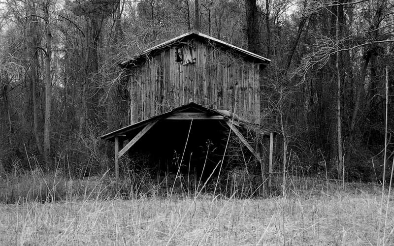 Creepy Barn in Micanopy, Florida