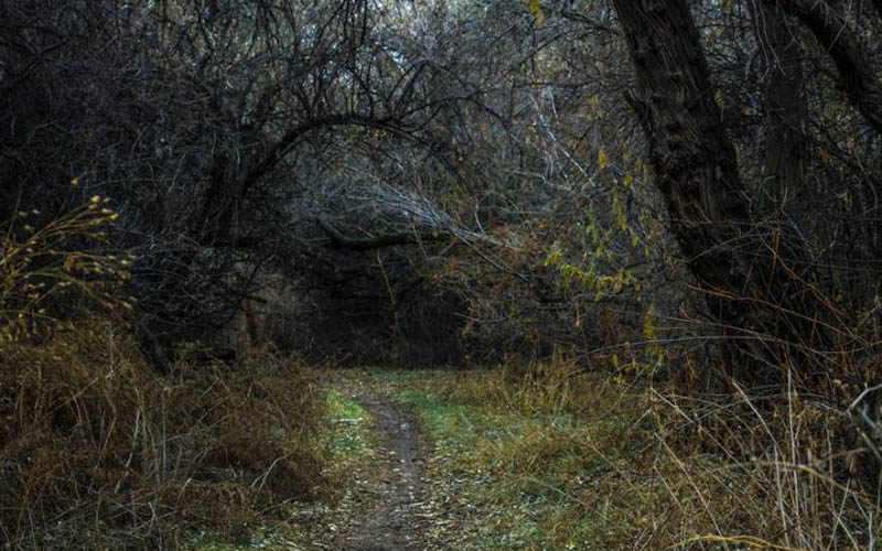 Paranormal Evil in San Diego: The Hidden Path That Stirs Up Demons