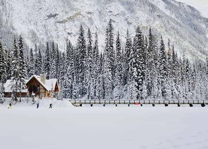 Canadian Rockies Snow Adventure Tour guest photo