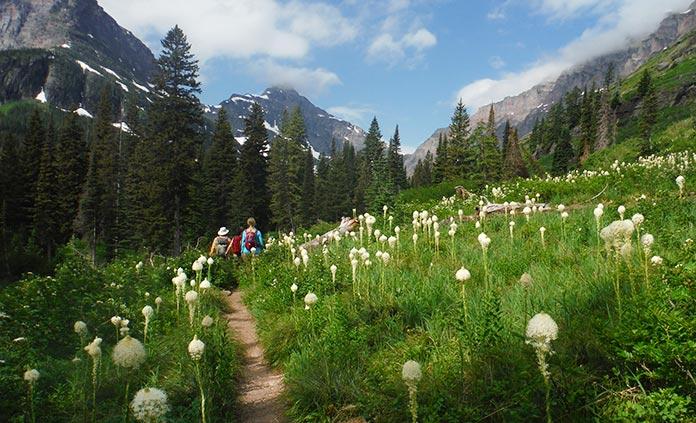 Glacier & Waterton Lakes Walking & Hiking Tour