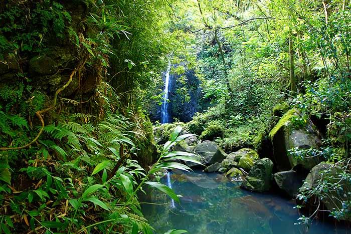 Waterfall - Road to Hana, Maui, Hawaii