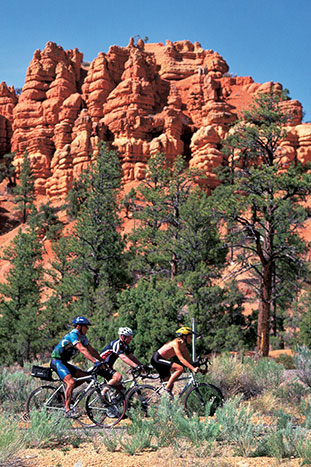 Biking - Bryce & Capitol Reef Family Multi-Adventure Tour – Older Teens & 20s