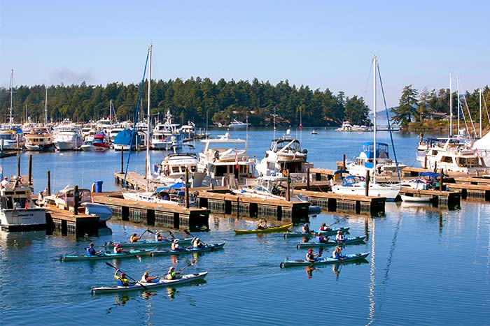 San Juan Islands Multi-Adventure Tour