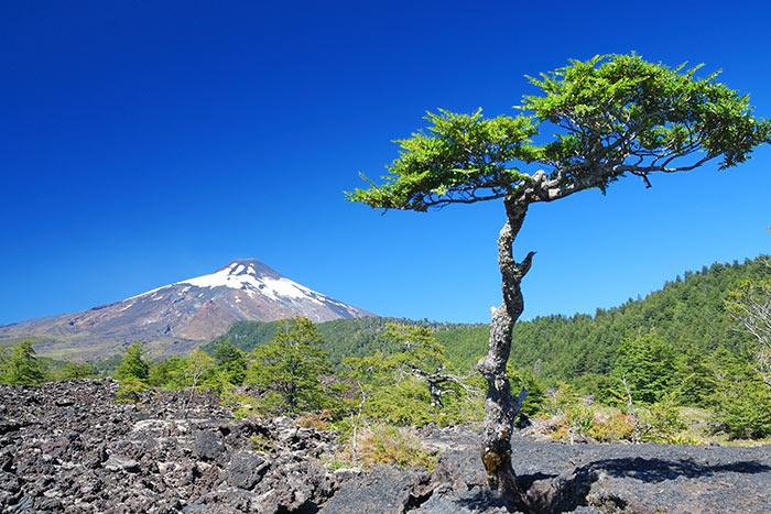Chile Walking & Hiking Tour