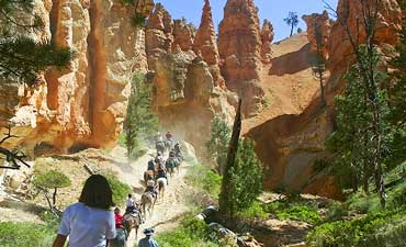 Bryce & Capitol Reef Family Multi-Adventure Tour