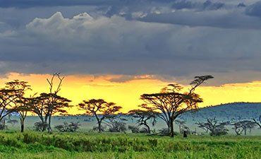 Tanzania Safari Multi-Adventure Tour