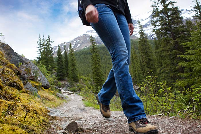 Hiking Trail in the Canadian Rockies