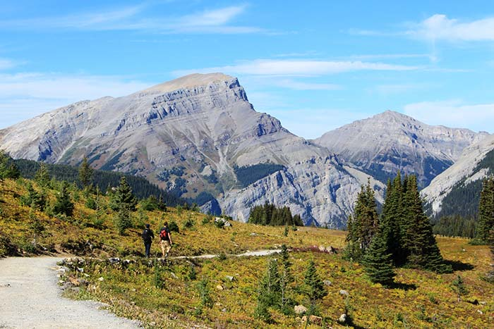 Hiking on a path in the Canadian Rockies