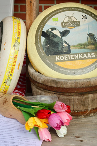 Netherlands Cheese and Tulips
