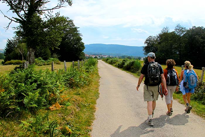 New Walking and Hiking Tours