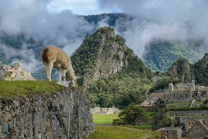Peru Family Walking & Hiking Tour - 20s & Beyond | Backroads