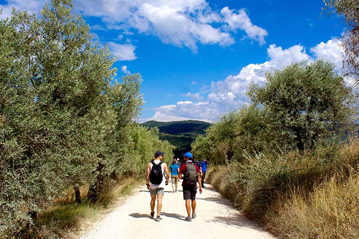 Cinque Terre & Tuscany Family Walking & Hiking Tour - 20s & Beyond | Backroads