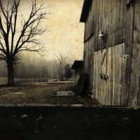 Modern farmhouse style art featuring an old horse barn and a leafless tree