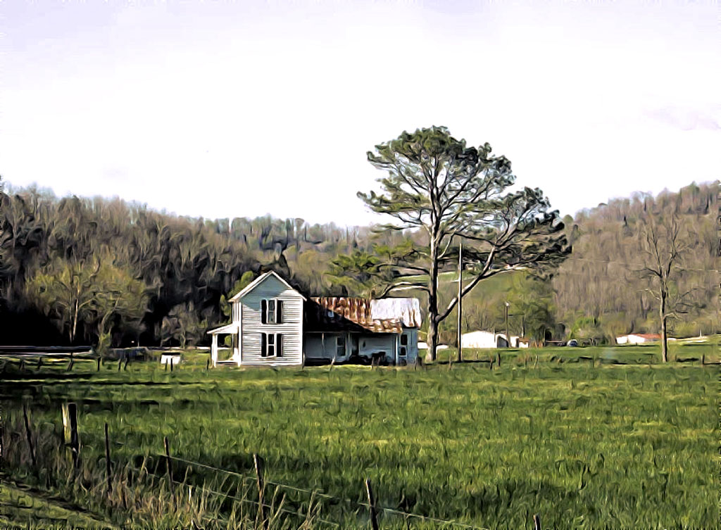 Wall Decor featuring a white abandoned farmhouse next to a large pine tree