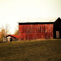 Photo Print of Red country barn bathed in sunlight