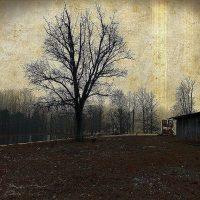 Modern Farmhouse Wall Art featuring a wooden horse barn and a wintery tree in vintage brown tones