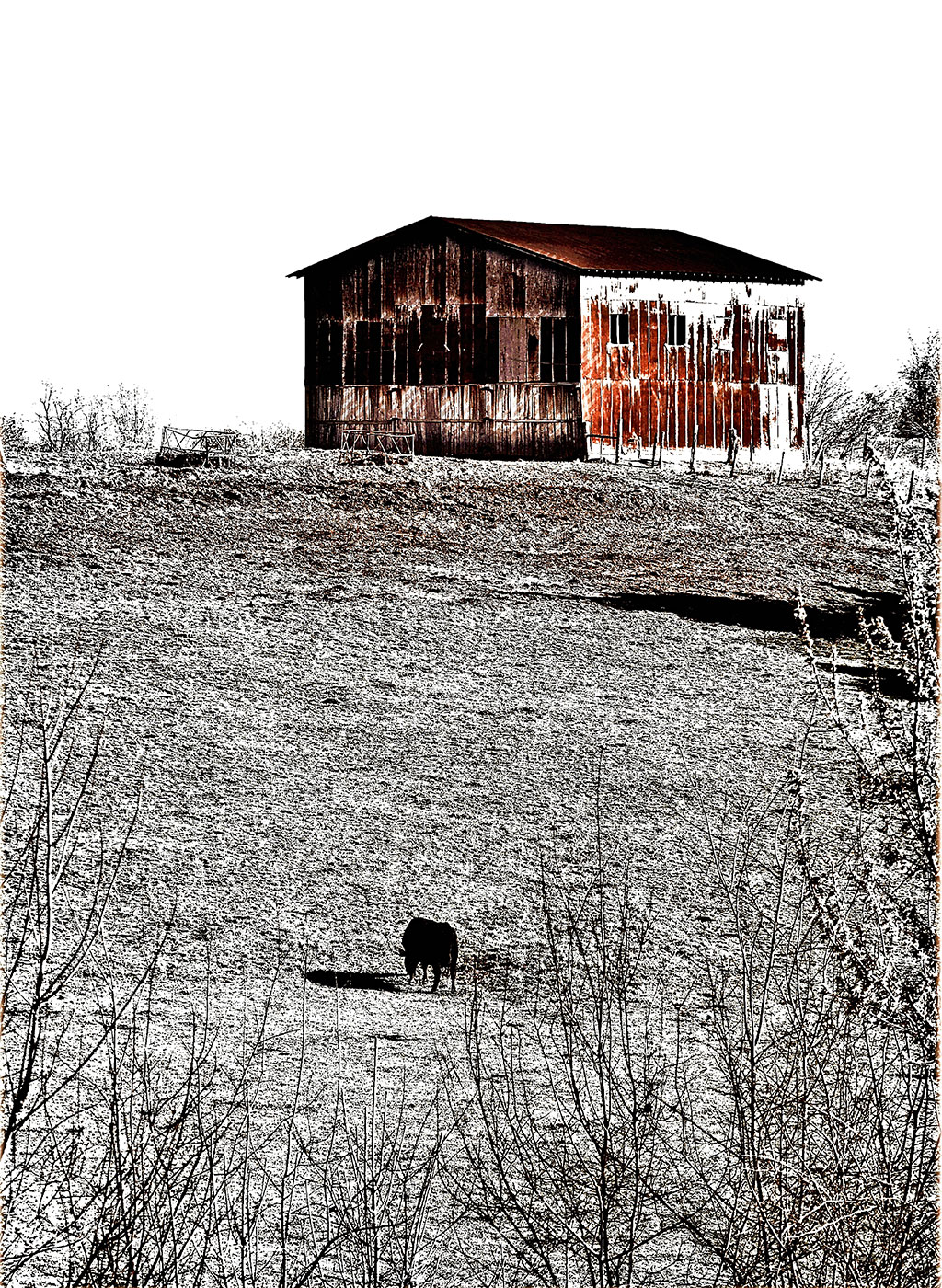 Sophisticated-Farmhouse-Artwork-The Sentry Backwater-Stills