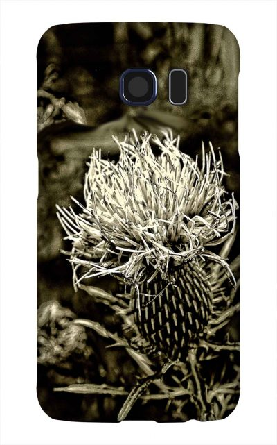 Product, Cellphone Case: Thistle - Closeup of white thistle in black and white