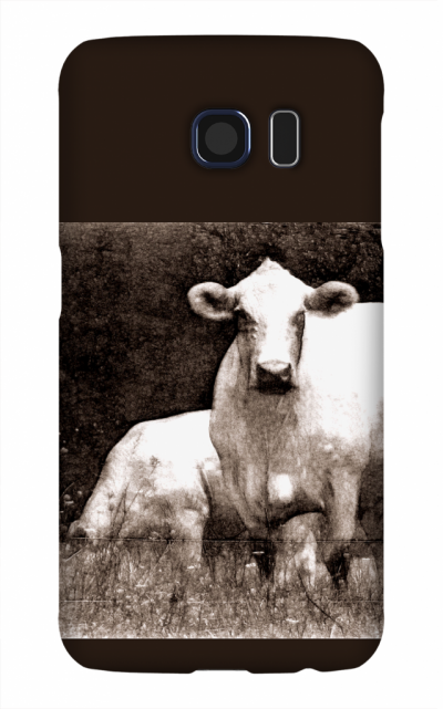 Product, Cellphone Case: Curious Cow - Black and white image of two white cows