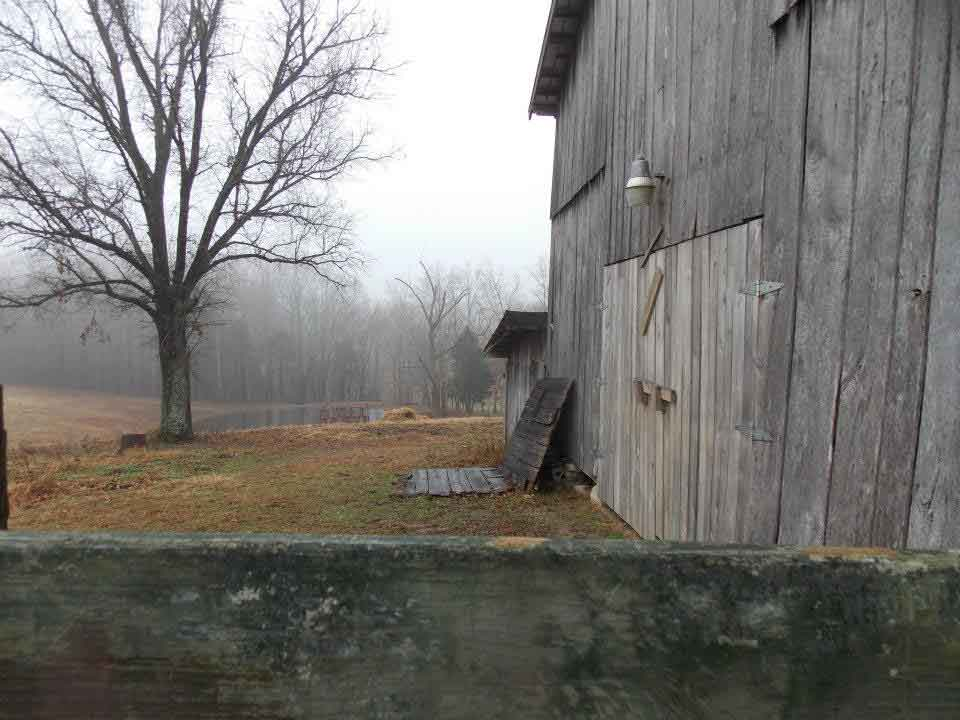 Untouched original image of horse barn and wintery tree, Then Came Dusk