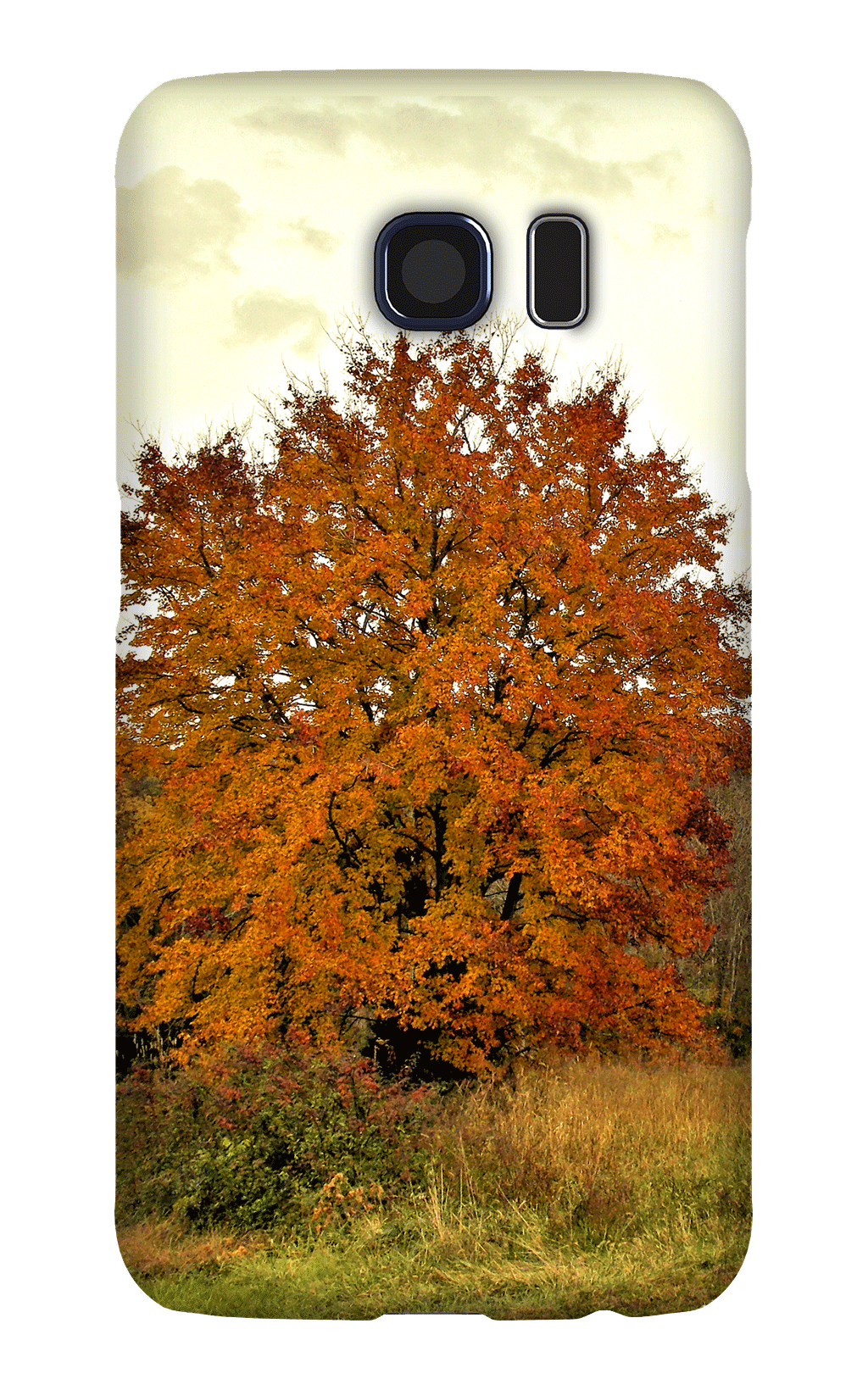 Autumn-Cellphone-Case