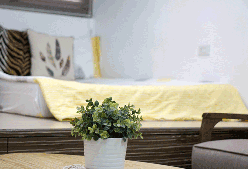 Yellow throw in Using Color Psychology in Decorating article