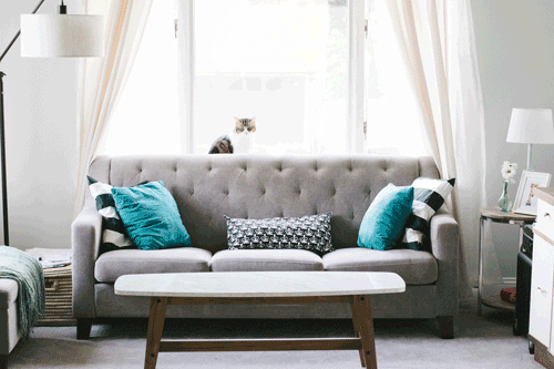 Grey couch with blue pillows in Using Color Psychology in Decorating article