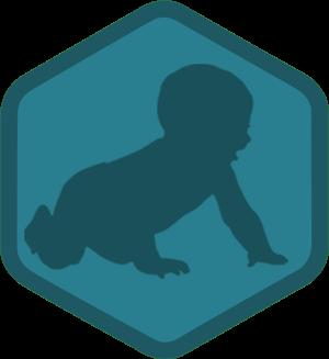 SEO 101 badge