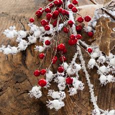Christmas Tree Picks
