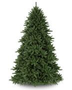 $300 - $600 Trees