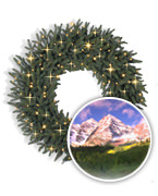 Aspen Christmas Signature™ Wreaths and Garlands Collection