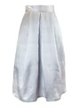 Web sample paneled skirt