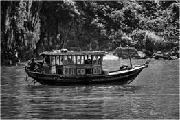 Along Halog Bay 3 by Doug Testa