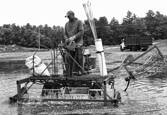Dom Fernendes Operates a Water Reel Cranberry Harvester by Gene Dominique